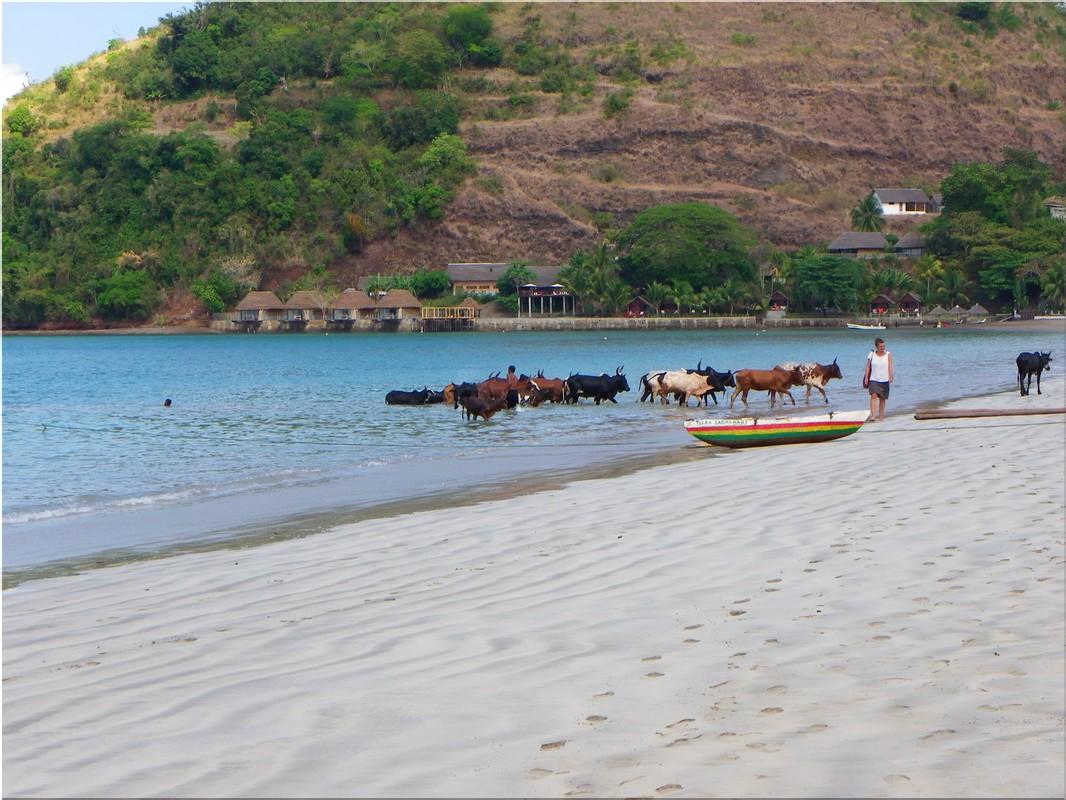 La chasse la pêche le tourisme dans le domaine dAmour